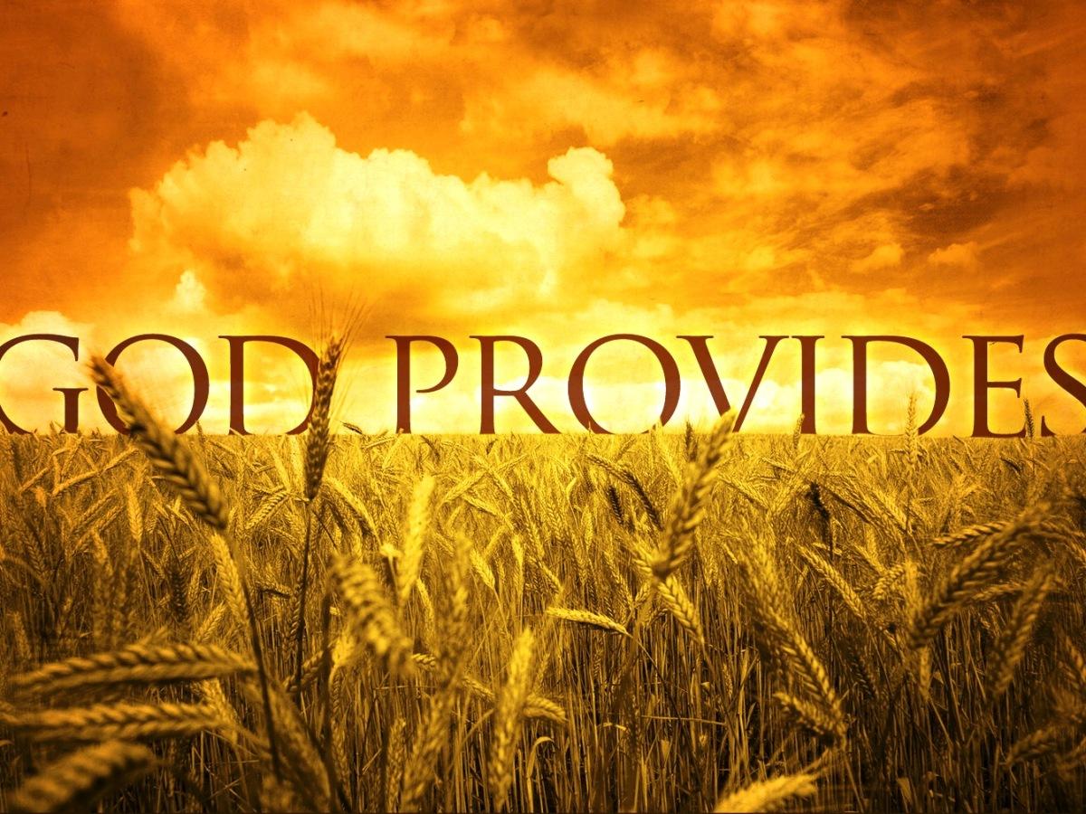 Prosperity, Provider